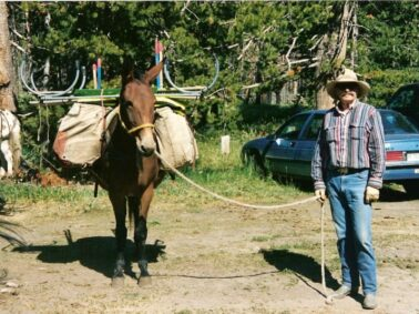 Horseback Riding in Yellowstone and the Teton Wilderness, Wilderness Trails, Inc.